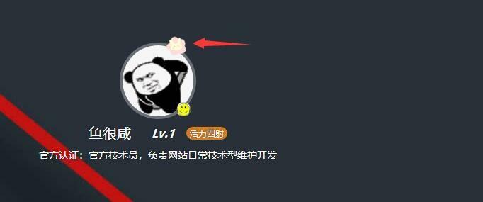 新增头像框功能